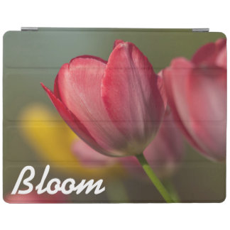 Close-up of red and yellow tulips in garden iPad cover