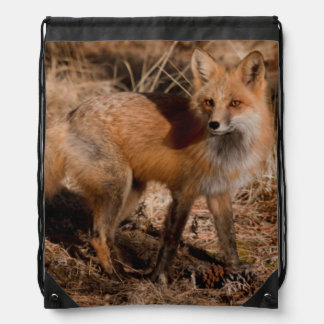 Close-up of red fox drawstring bag