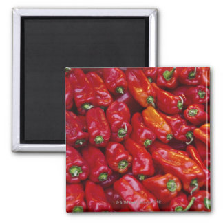 Close up of red peppers square magnet
