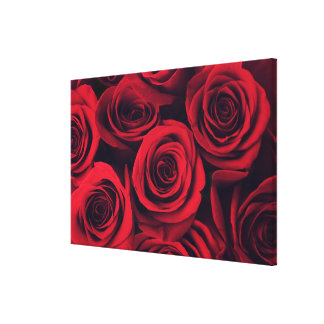 Close up of red rose flowers. canvas print