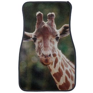 Close up of Reticulated Giraffe Car Mat