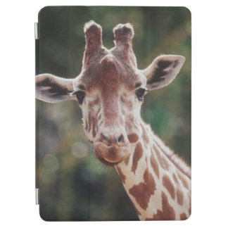 Close up of Reticulated Giraffe iPad Air Cover