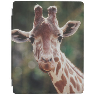 Close up of Reticulated Giraffe iPad Cover
