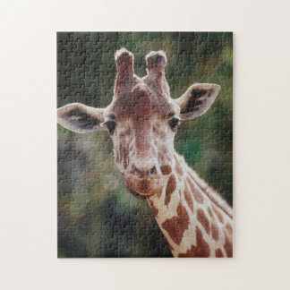 Close up of Reticulated Giraffe Jigsaw Puzzle