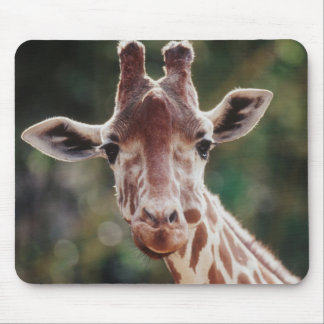 Close up of Reticulated Giraffe Mouse Mat