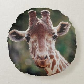 Close up of Reticulated Giraffe Round Cushion