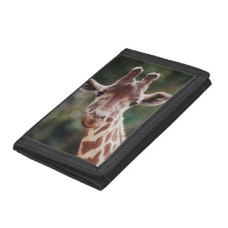Close up of Reticulated Giraffe Tri-fold Wallet