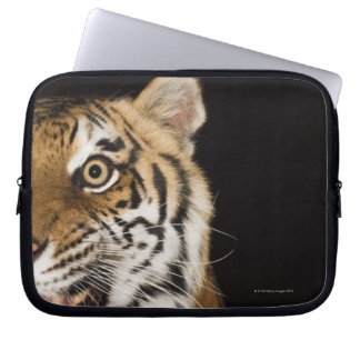 Close up of roaring tiger's face laptop sleeve