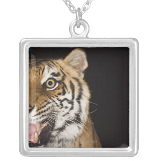 Close up of roaring tiger's face silver plated necklace