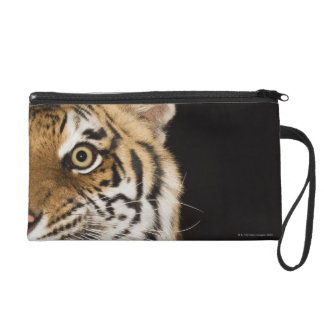 Close up of roaring tiger's face wristlet clutch