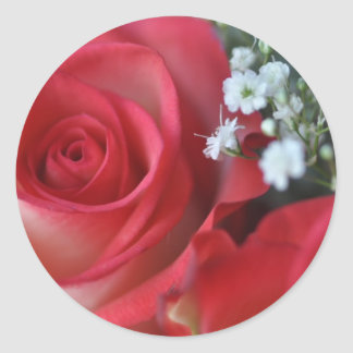 Close up of rose and baby s breath sticker