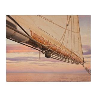 Close-Up Of Sail And Ropes   Maine, Camden Wood Wall Decor