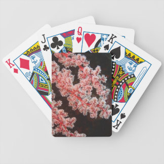 Close-up of Sea Fan underwater, North Sulawesi Bicycle Playing Cards