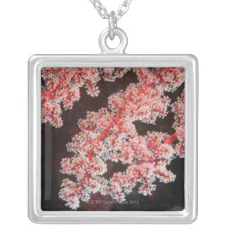 Close-up of Sea Fan underwater, North Sulawesi Silver Plated Necklace