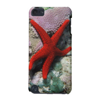 Close-Up of Sea star iPod Touch 5G Covers