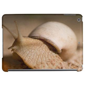 Close-Up Of Snail, USAngu Flats, Madibira iPad Air Case