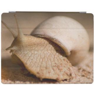 Close-Up Of Snail, USAngu Flats, Madibira iPad Cover