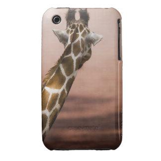 Close-up of Somali giraffe (Giraffa Case-Mate iPhone 3 Cases