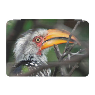 Close-Up Of Southern Yellow-Billed Hornbill iPad Mini Cover
