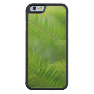 Close-up of sword fern carved maple iPhone 6 bumper case