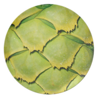 Close-up of texture and pattern of tropical tree party plate
