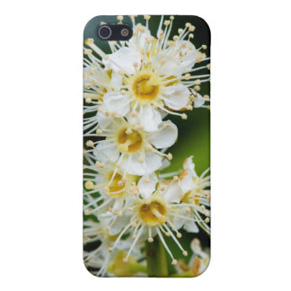 Close-up of tiny flowers cover for iPhone 5/5S