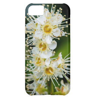 Close-up of tiny flowers iPhone 5C case