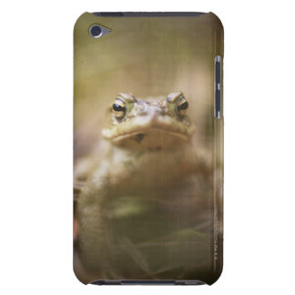 Close-up of toad barely there iPod case