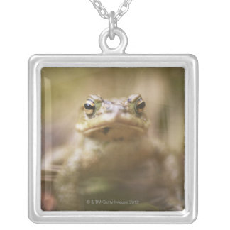 Close-up of toad silver plated necklace