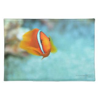 Close-up of tomato anemone fish, Okinawa, Japan Placemat