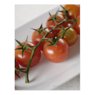 Close-up of tomatoes on a tray postcard