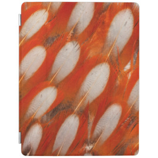 Close Up Of Tragopan Feathers iPad Cover
