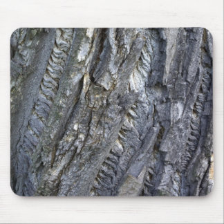 Close-up of tree trunk s grey bark mouse pad