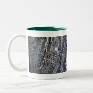 Close-up of tree trunk's grey bark mugs
