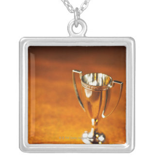 Close-up of trophy silver plated necklace