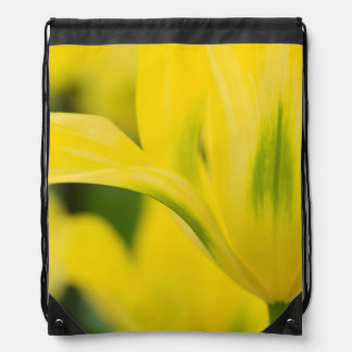 Close-up of tulip 2 drawstring bag