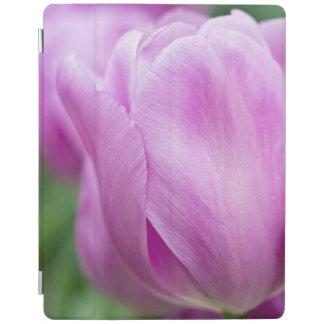 Close-up of tulip iPad cover