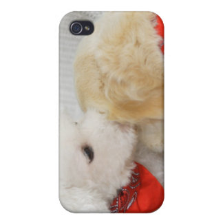 Close-up of two dogs iPhone 4 case