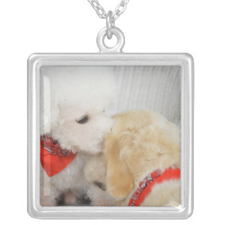 Close-up of two dogs silver plated necklace