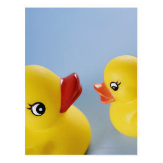 Close-up of two rubber ducks postcard