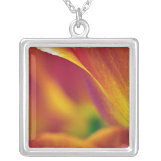 Close-up of underside of tulip flower, 4 silver plated necklace