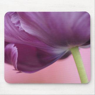 Close-up of underside of tulip flower, Kuekenhof Mouse Pad