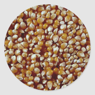 Close-up of unpopped popcorn kernels texture round sticker