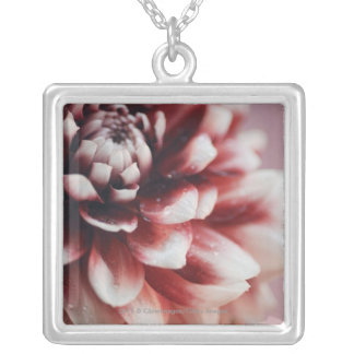Close-up of water drops on a flower silver plated necklace
