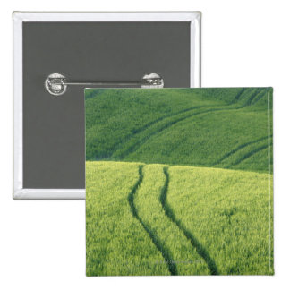 Close up of Wheat Field with Tire Tracks, 15 Cm Square Badge