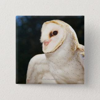 Close-up of wild owl 15 cm square badge