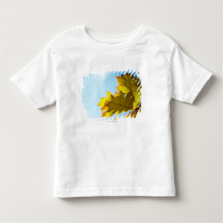 Close Up of Yellow Fall Leaves Toddler T-Shirt