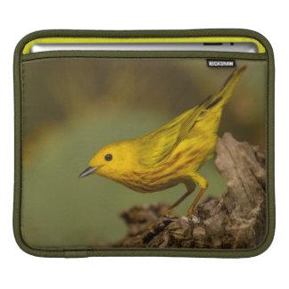 Close-Up Of Yellow Warbler iPad Sleeve