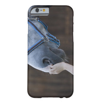 close-up of young girl touching white horse barely there iPhone 6 case