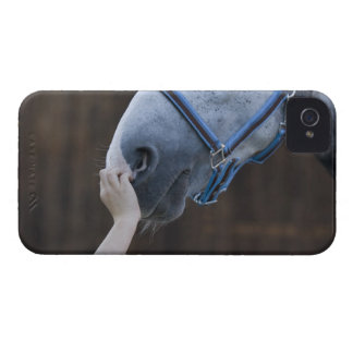 close-up of young girl touching white horse Case-Mate iPhone 4 case